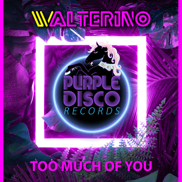 Purple Disco Records