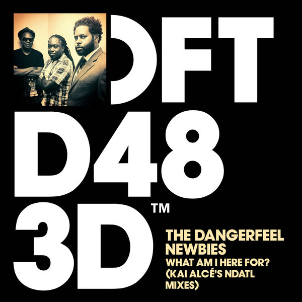 The DangerFeel Newbies - What Am I Here For? (Kai Alcé's NDATL ...