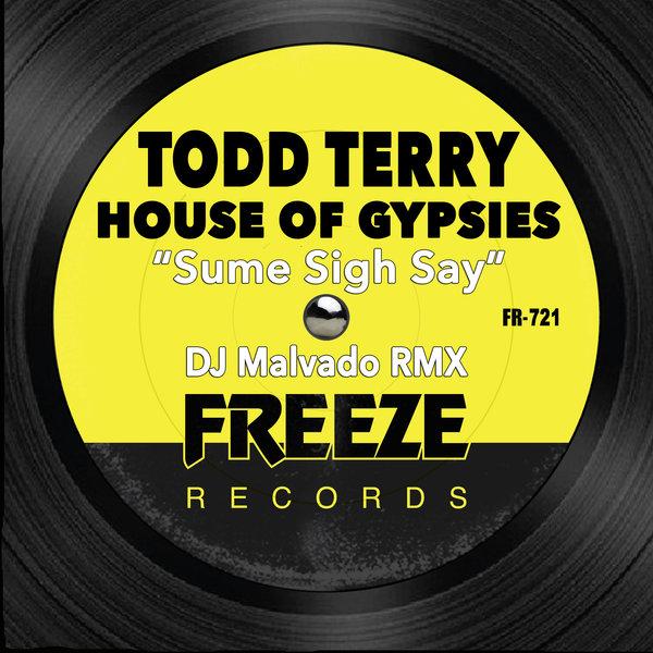 Todd Terry & House Of Gypsies - Sume Sigh Say (DJ Malvado RMX)