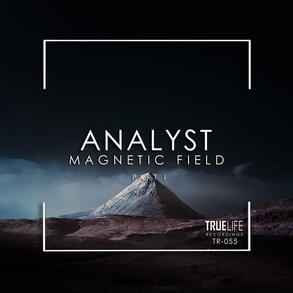 Analyst - Magnetic Field on Traxsource