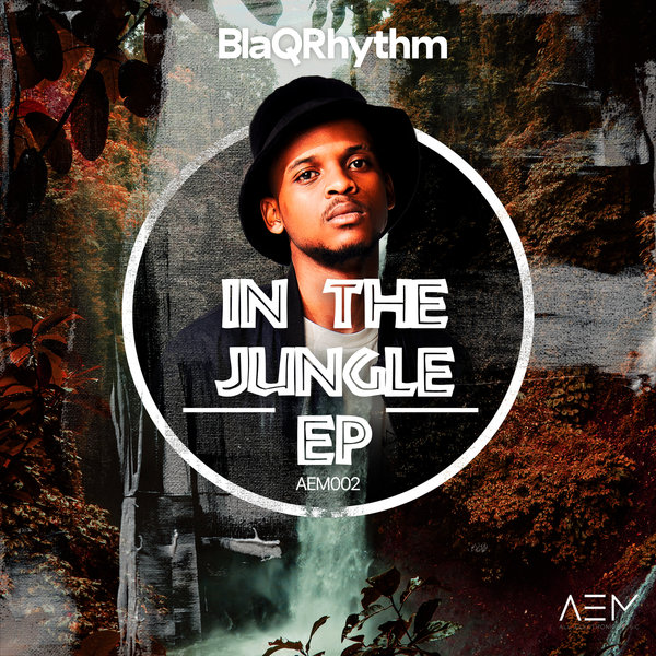 BlaQRhythm - In The Jungle (Extended Mix)