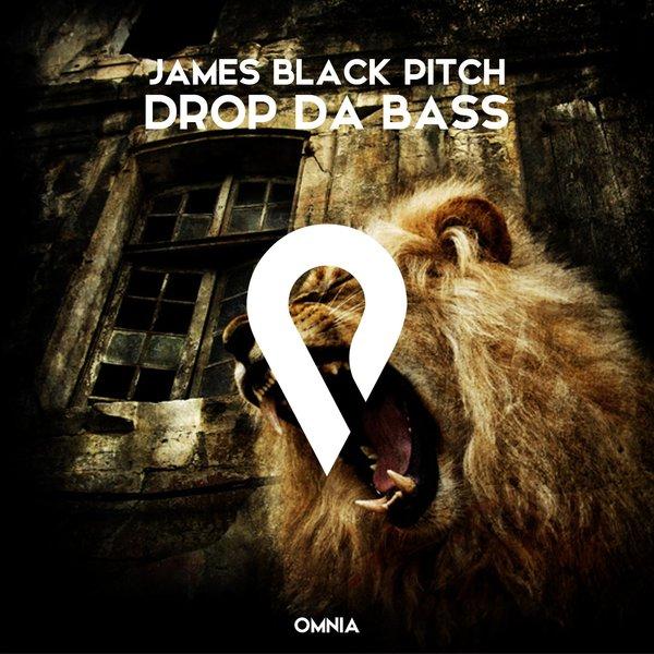 James Black Pitch Drop Da Bass On Traxsource