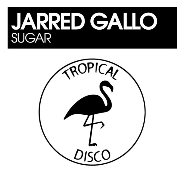 Tropical Disco Records