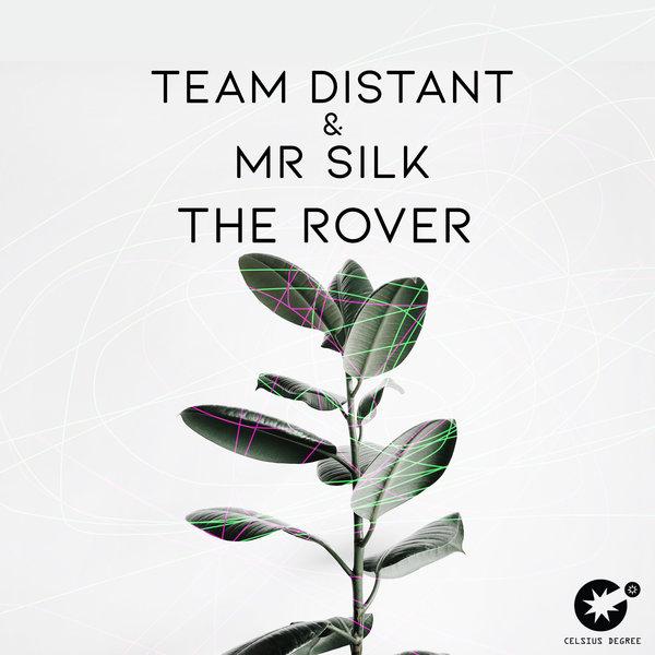 Mr Silk